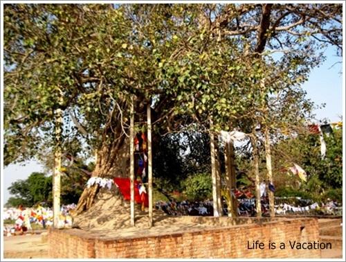 Sravasti India  city images : Lord Buddha performed miracles in Sravasti, India | Life is a Vacation