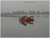 Dal Lake Shikara