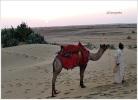 SAM Sand Dune Sun Set Thar Desert Jaisalmer