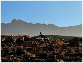 Gangbal Nundkol Harmukh Sunrise Bird